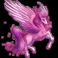 Roses Pegasus