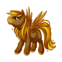 Autumn Pegasus Baby