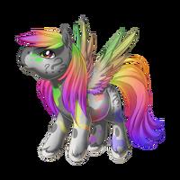 Confusion Pegasus Baby Rainbow