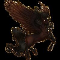 Dark Bay Pegasus