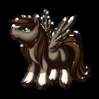 First Snow Pegasus Baby