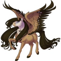 Griffon Vulture Alicorn