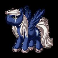 Sparkling Comet Pegasus Baby
