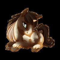 Bay Pinto Unicorn Baby