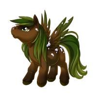 Evergreen Pegasus Baby