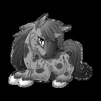 Confusion Unicorn Baby