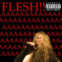 Fleshhuuto