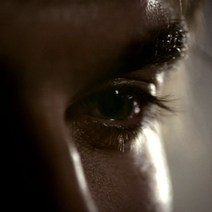 Damon Compelindo Elena