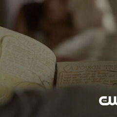 Klaus reading a book