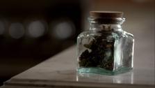 Darkness Herb2