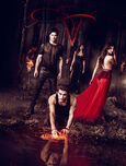 The-Vampire-Diaries-Season-5-Promotional-Poster-the-vampire-diaries-tv-show-35533353-489-647
