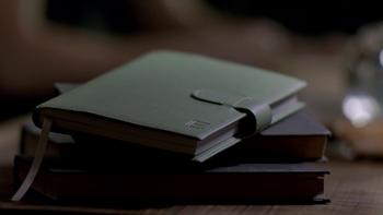 vampire diaries elenas diary entries