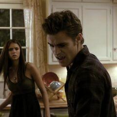It was the same window Elena saw Stefan's vampire reflection in