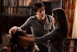 Bonnie, Damon und Mason