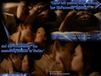 Stelena quotes from book - 11