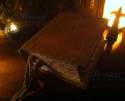 Vampire-diaries-bonnie-grimoire-spell-book-of-shadows-2e2ae