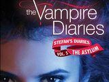 Stefan's Diaries: The Asylum