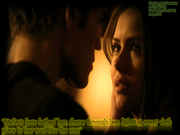400px-Stelena quote from the book 1