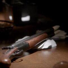 Stake Shotgun