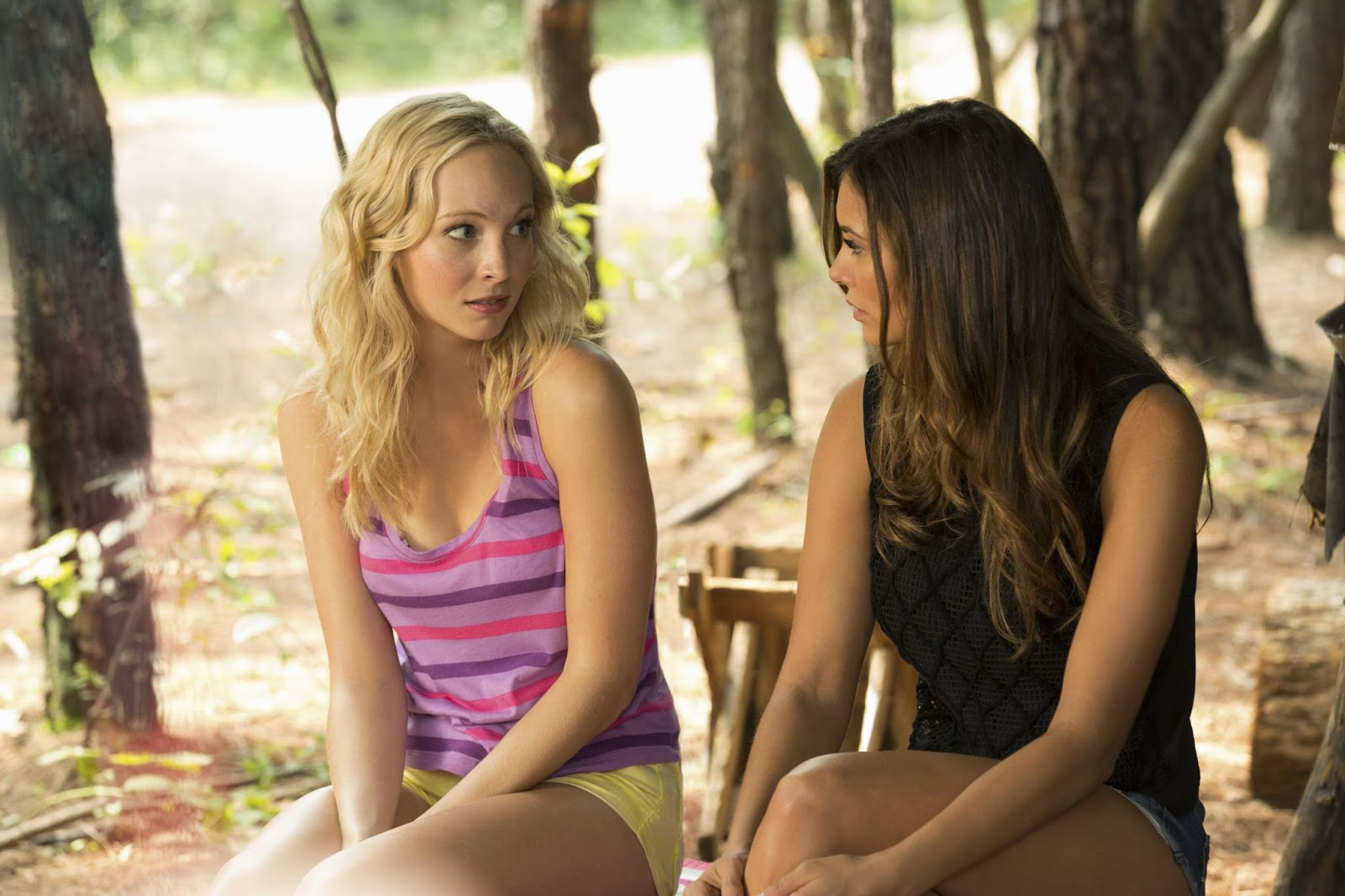 Welcome to Paradise | The Vampire Diaries Wiki | FANDOM