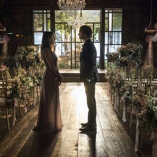 Elena und Damon vor der Hochzeit.