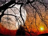 Sonne-Mond-Fluch