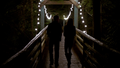 101-087~Elena~Stefan-The Fall.png
