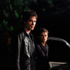 Damon and Stefan.