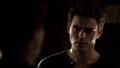 103-051-Stefan~Damon.png