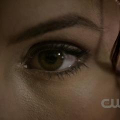 Katherine manipuliert Stefan