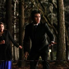 Elena and Damon seeing Stefan.