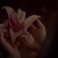 Qetsiyah's Wedding Flower