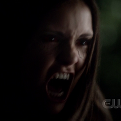 Elena wird wütend weil Damon Matt töten will