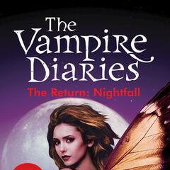 Vampire Diaries The Return Shadow Souls Ebook
