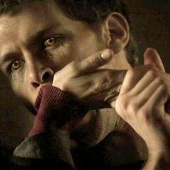 Klaus beißt Katherine