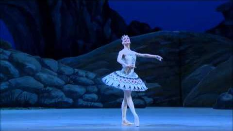 Svetlana Zakharova Pharaoh's Daughter variation 1st act