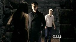 Normal TVD0309