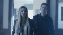 Lexi stefan looking for alaric