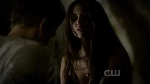 Vampire Diaries 2x11 Stefan and Katherine Wall Sex