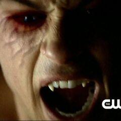 Damon en vampire
