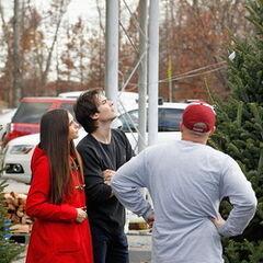Avec Ian en train de choisir leur sapin de Noël (décembre 2012)