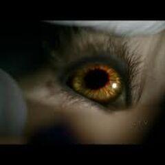 Les yeux de Tyler après l'accident de voiture avec Matt et Caroline