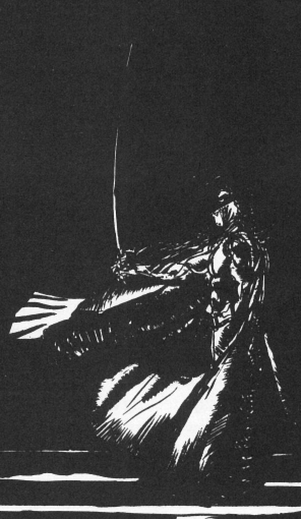 Vampire Hunter D Vs Adrian Fahrenheit Ţepeş (Vampire Hunter