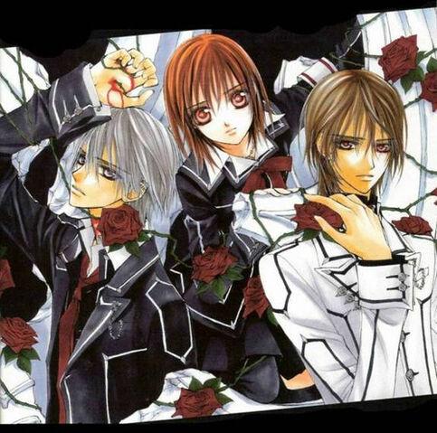 File:Vampire Knight - Manga 4.5.jpg