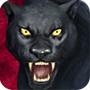 Black Jaguar feed