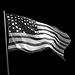 American flag BNW