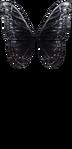 Dark Steel Butterfly Wings