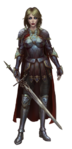 Female Arthurian Knight costume