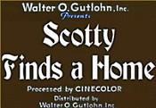 Scottie home-1-