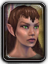 Icon woodelf female